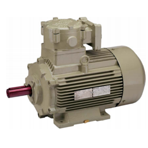 High Efficiency Flameproof Motors For Gas Groups IIA & IIB as per IS/IEC 60079 Image