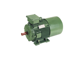 Inverter Duty Motors Image